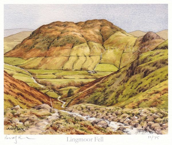 Lingmoor Fell Andy Beck