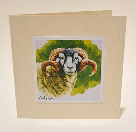 Old Swaledale Tup greeting card