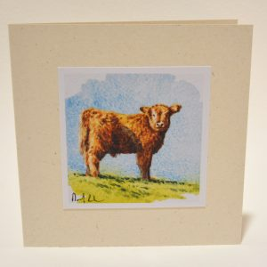 Young highlander greeting card