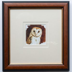 Barn owl study framed