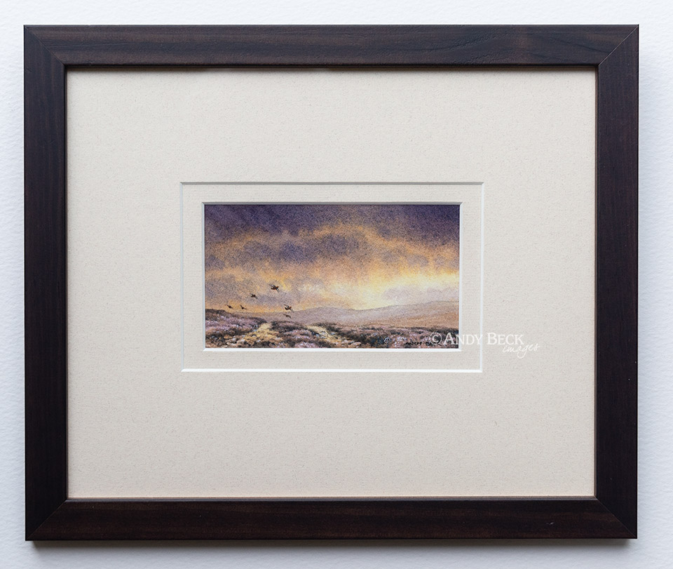 Evening Covey Red Grouse framed