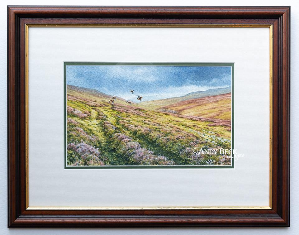 Grouse over Reeth High Moor framed